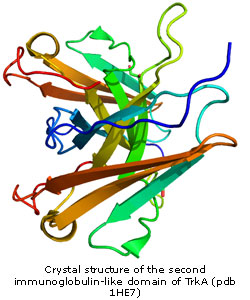 TrkA crystal structure